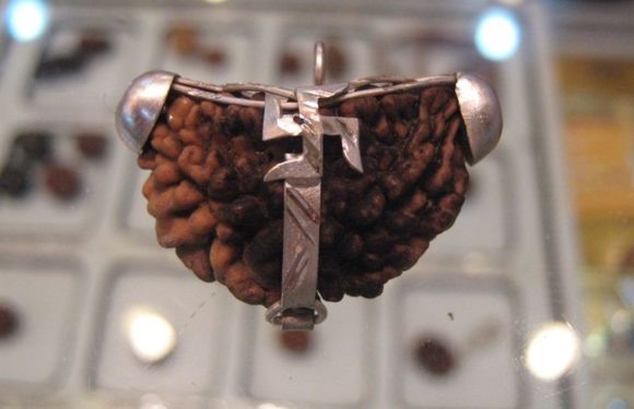 4 Ways To Find Out The Purity Of Ek Mukhi Rudraksh