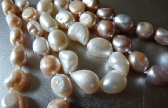 What's the Difference between Freshwater and Saltwater Pearls?