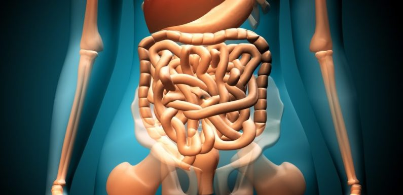 What is a gastrointestinal disorder?